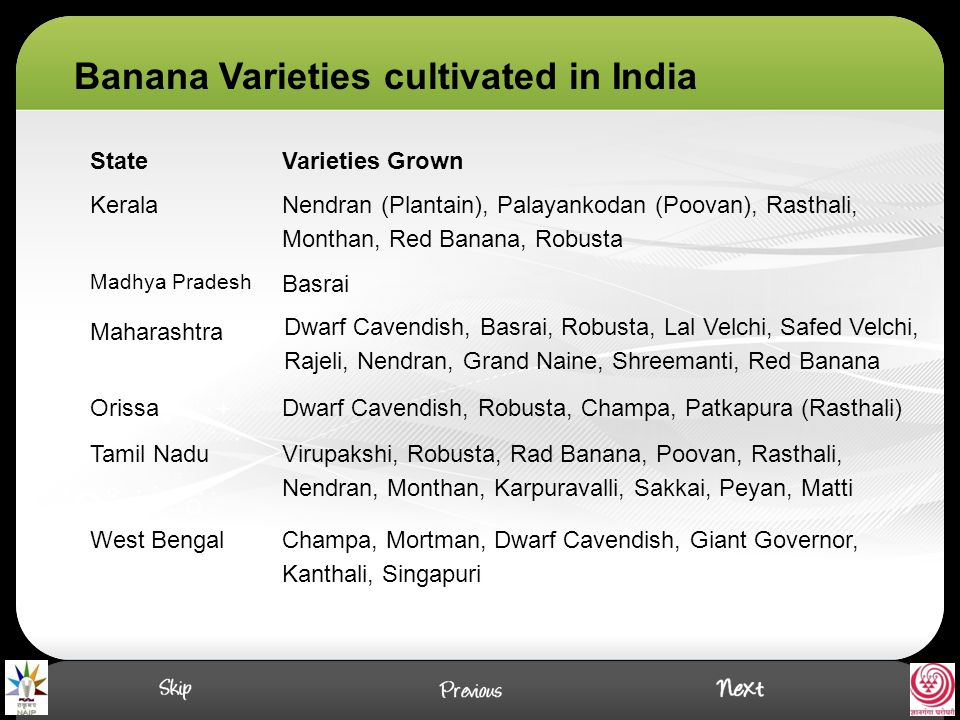 Important Cultivars of Banana Dwarf Cavendish: A popular commercial cultivar grown for table and processing purpose.