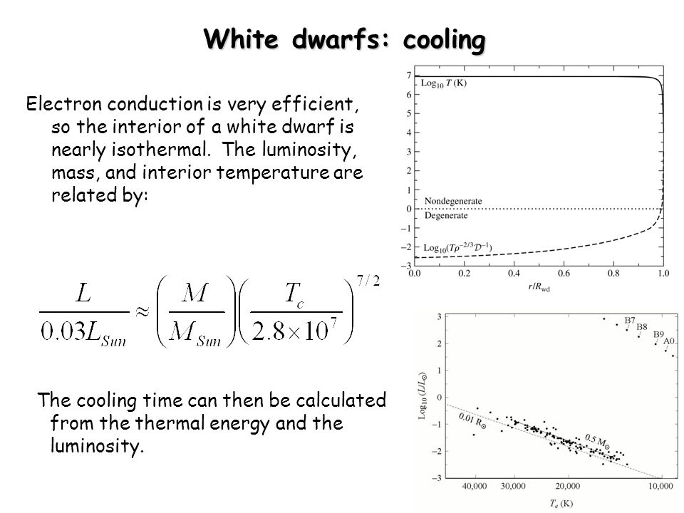 White dwarfs: cooling Electron conduction is very efficient, so the interior of a white dwarf is nearly isothermal.