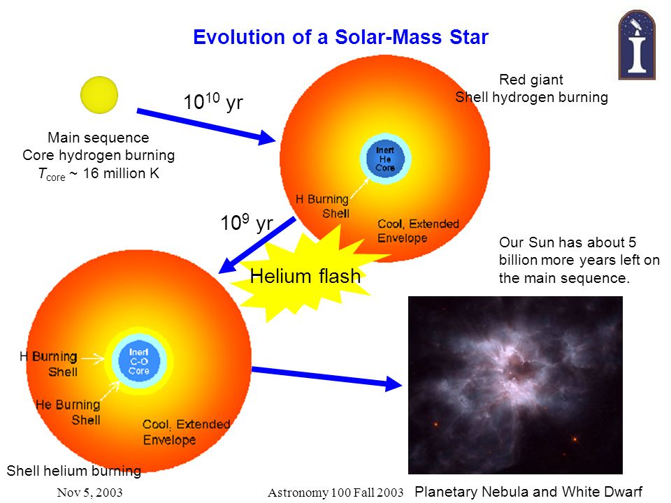 Nov 5, 2003Astronomy 100 Fall 2003 Evolution of a Solar-Mass Star Main sequence Core hydrogen burning T core ~ 16 million K Red giant Shell hydrogen burning 10 10 yr 10 9 yr Shell helium burning Helium flash Planetary Nebula and White Dwarf Our Sun has about 5 billion more years left on the main sequence.