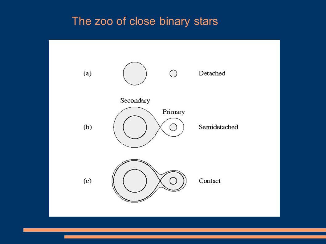 The zoo of close binary stars