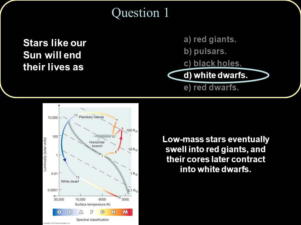 Copyright © 2010 Pearson Education, Inc. a) red giants. b) pulsars. c) black holes. d) white dwarfs. e) red dwarfs. Question 1 Stars like our Sun will