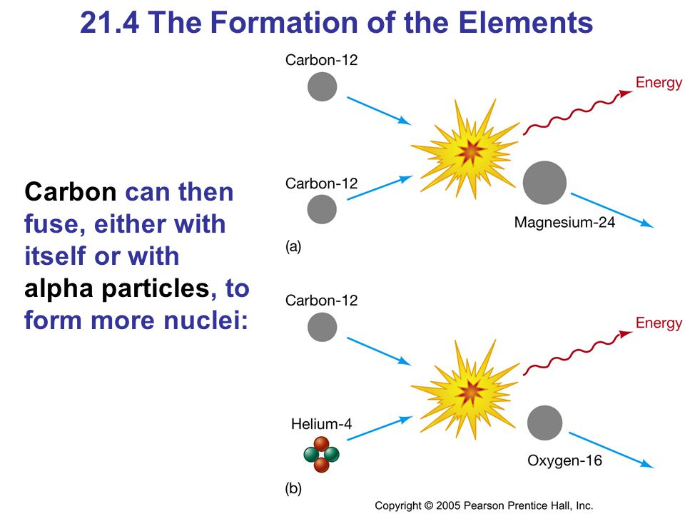 21.4 The Formation of the Elements Carbon can then fuse, either with itself or with alpha particles, to form more nuclei: