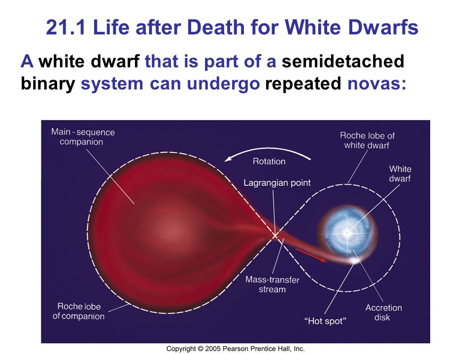 21.1 Life after Death for White Dwarfs A white dwarf that is part of a semidetached binary system can undergo repeated novas: