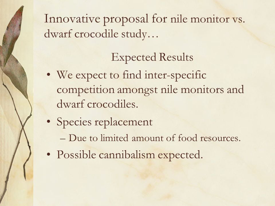 Innovative proposal for nile monitor vs. dwarf crocodile study… Expected Results We expect to find inter-specific competition amongst nile monitors an