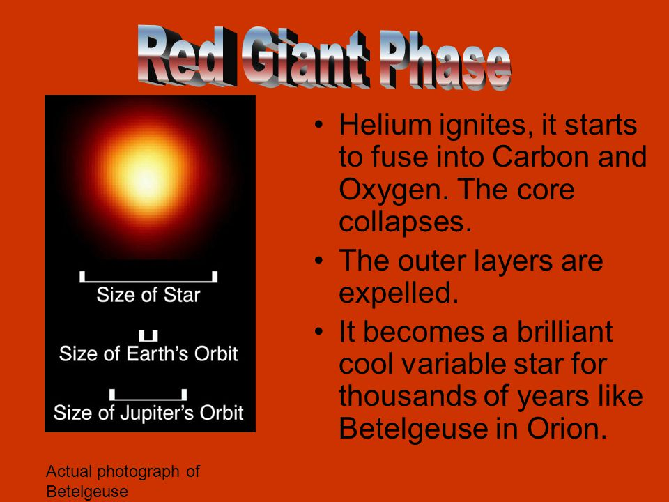 Helium ignites, it starts to fuse into Carbon and Oxygen. The core collapses. The outer layers are expelled. It becomes a brilliant cool variable star