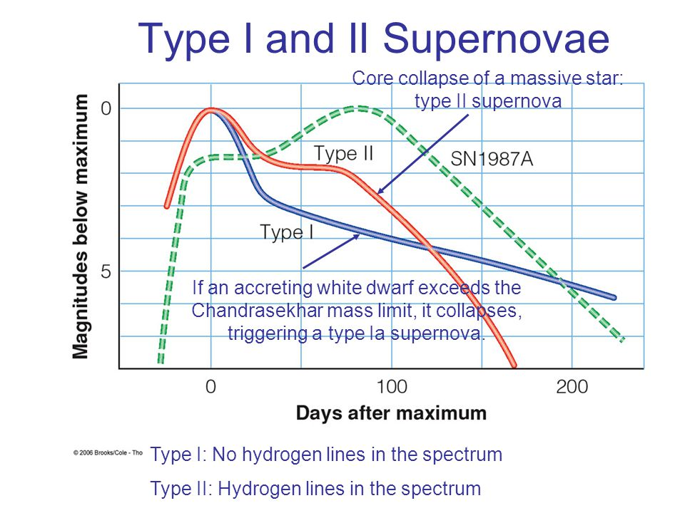 Type I and II Supernovae Core collapse of a massive star: type II supernova If an accreting white dwarf exceeds the Chandrasekhar mass limit, it colla