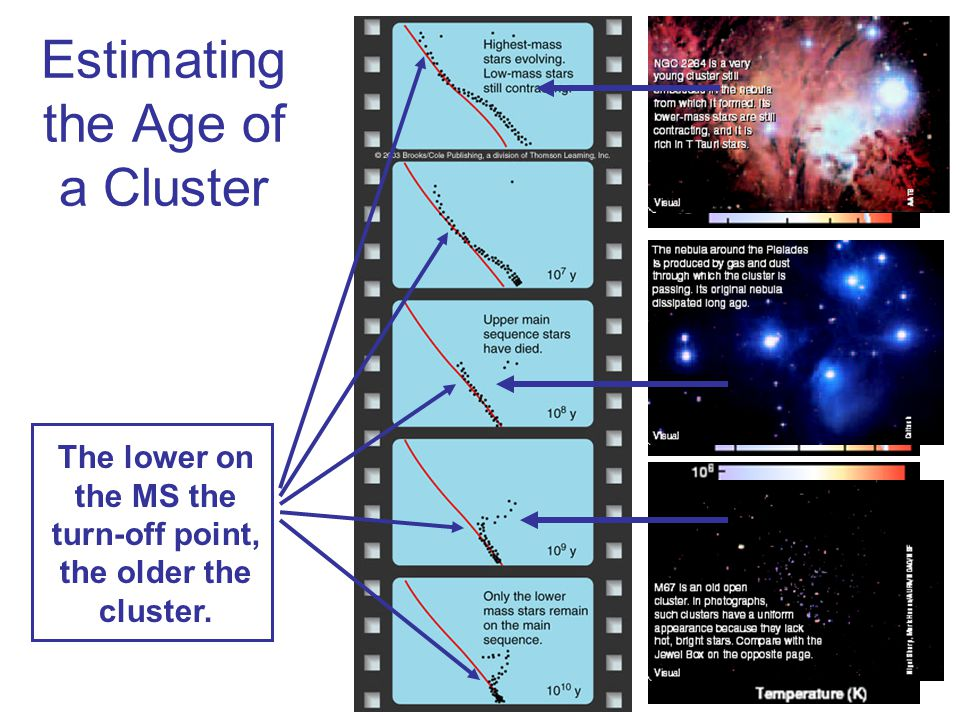 Estimating the Age of a Cluster The lower on the MS the turn-off point, the older the cluster.