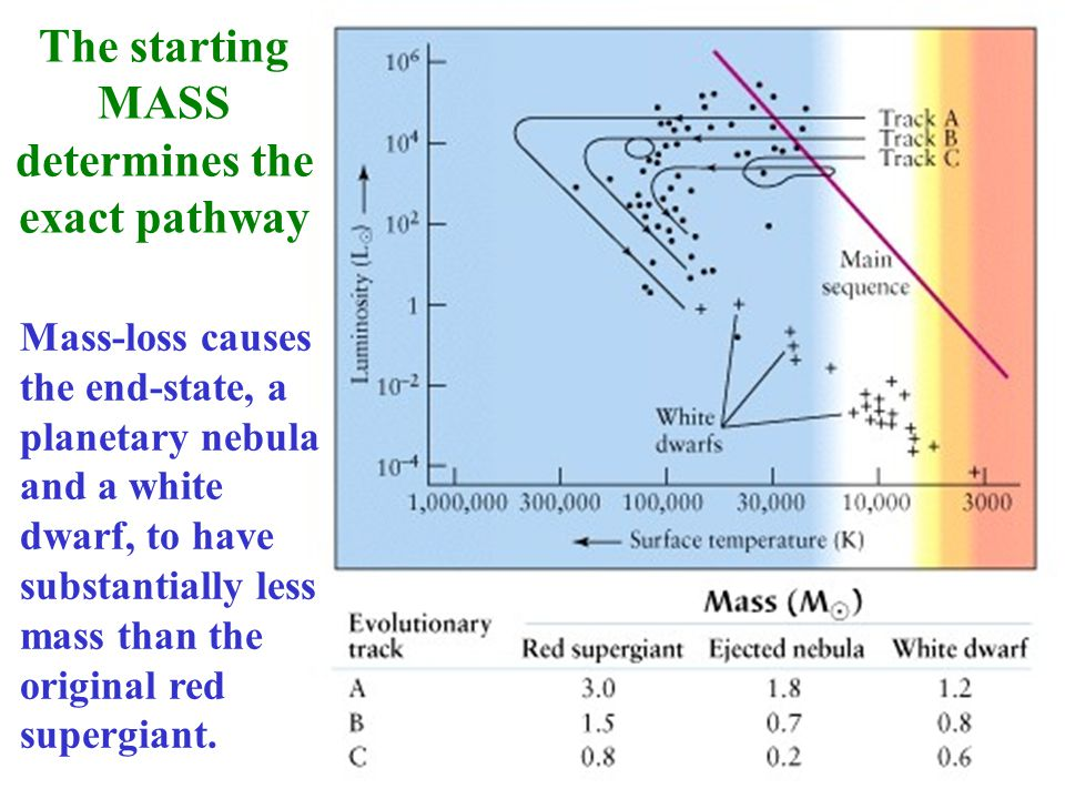 The starting MASS determines the exact pathway Mass-loss causes the end-state, a planetary nebula and a white dwarf, to have substantially less mass t