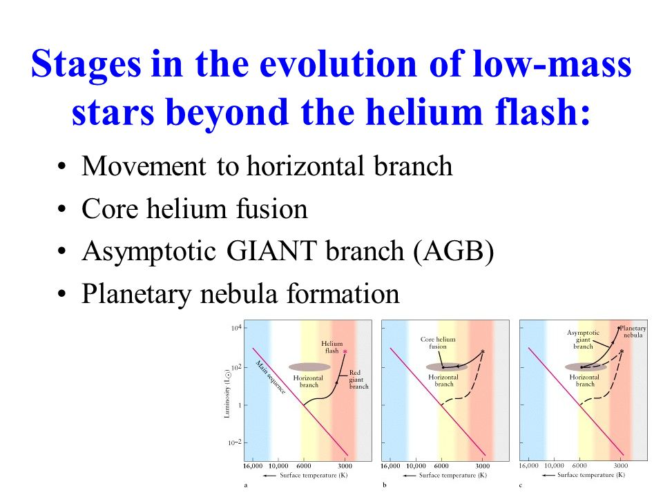 Stages in the evolution of low-mass stars beyond the helium flash: Movement to horizontal branch Core helium fusion Asymptotic GIANT branch (AGB) Planetary nebula formation