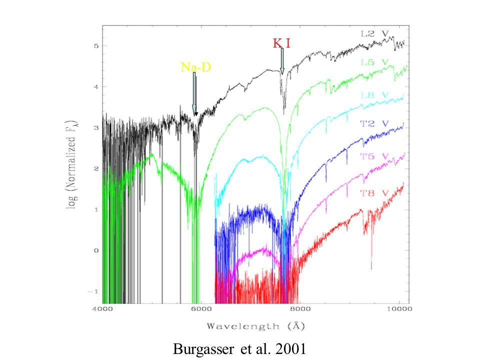 Burgasser et al. 2001 Na-D K I