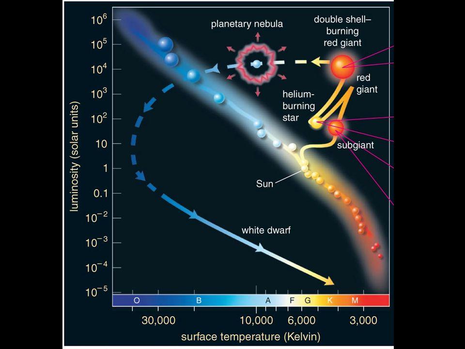 Do black holes really exist?