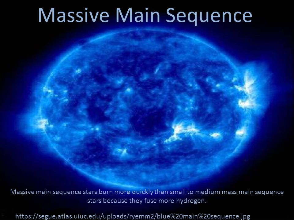 Massive Main Sequence https://segue.atlas.uiuc.edu/uploads/ryemm2/blue%20main%20sequence.jpg Massive main sequence stars burn more quickly than small to medium mass main sequence stars because they fuse more hydrogen.