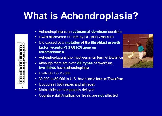 What is Achondroplasia? Achondroplasia is an autosomal dominant condition It was discovered in 1994 by Dr. John Wasmuth It is caused by a mutation of