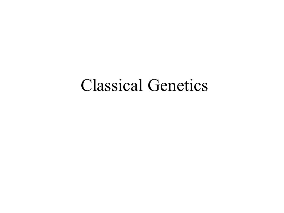 Chapter 23- Part 1 Classical Genetics Genetics got it's start as the study of inheritance.
