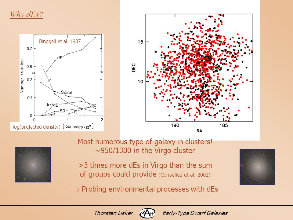 Thorsten LiskerEarly-Type Dwarf Galaxies Why dEs. Binggeli et al.
