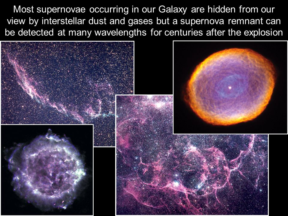 Most supernovae occurring in our Galaxy are hidden from our view by interstellar dust and gases but a supernova remnant can be detected at many wavelengths for centuries after the explosion