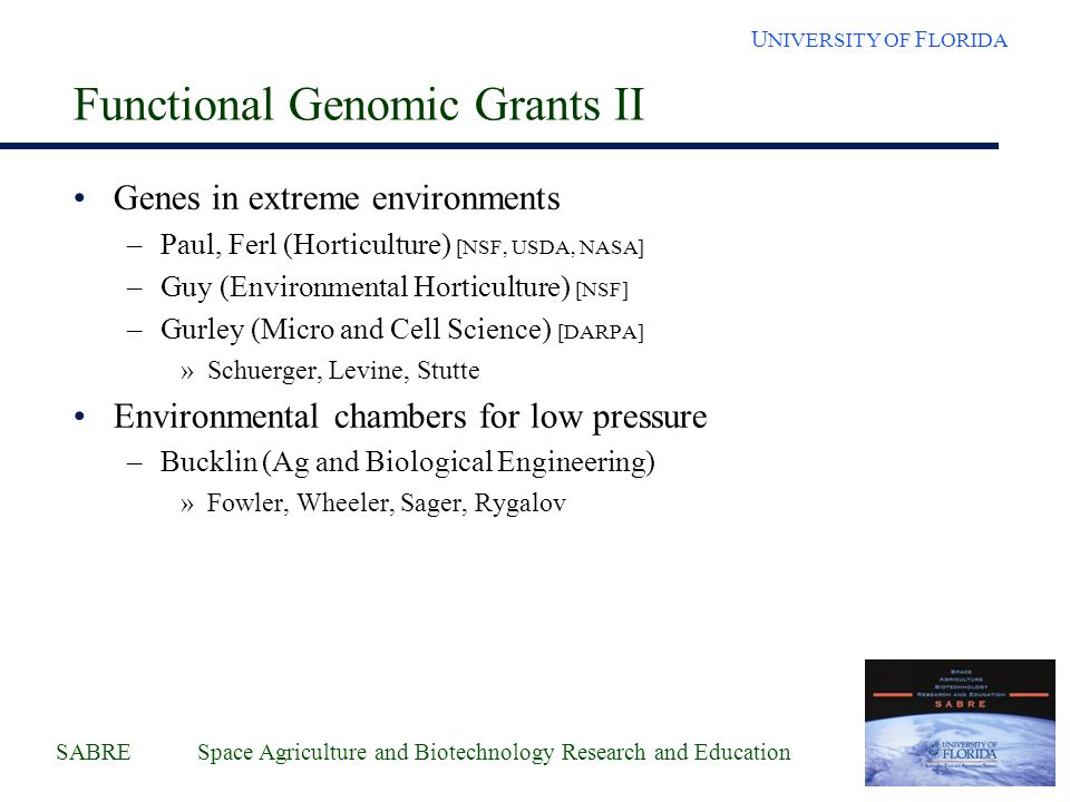 SABRE Space Agriculture and Biotechnology Research and Education U NIVERSITY OF F LORIDA Functional Genomics Interactions - ESTs ICBR Sequencing (Farmerie) State Genome Center (McCarty) NSF Peanut Tissue RNAs (UF-Gallo-Meagher) Wheat Tissue RNAs (KSC-Levine, Stutte, Goins) Spotted Gene Arrays Informatics Databases