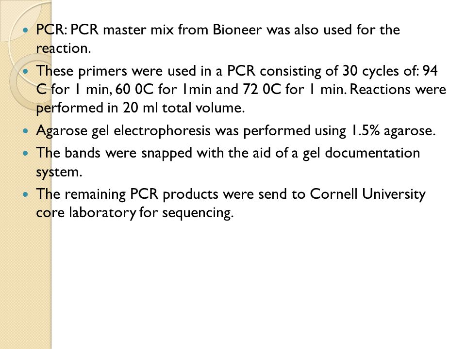 PCR: PCR master mix from Bioneer was also used for the reaction.