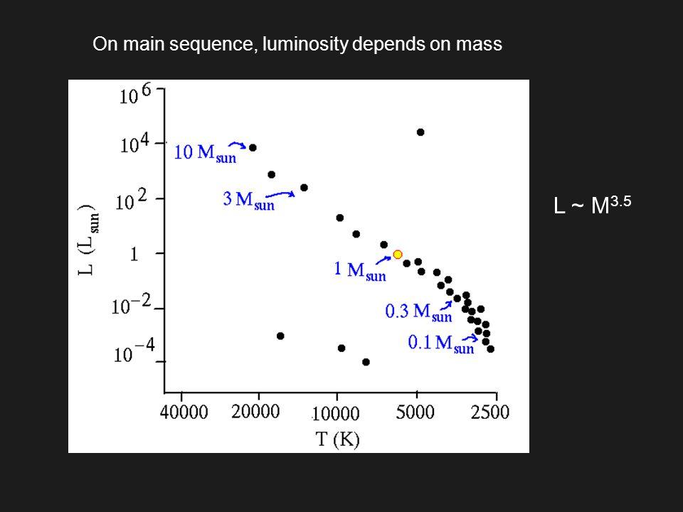 On main sequence, luminosity depends on mass L ~ M 3.5