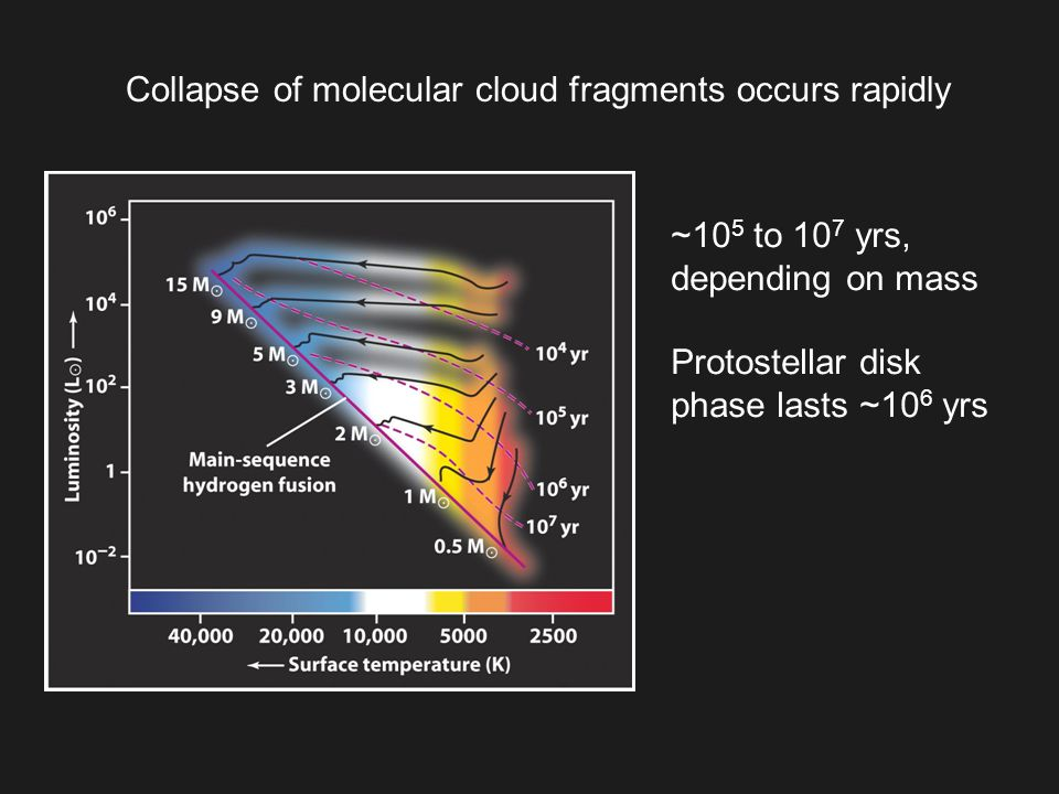 Collapse of molecular cloud fragments occurs rapidly ~10 5 to 10 7 yrs, depending on mass Protostellar disk phase lasts ~10 6 yrs