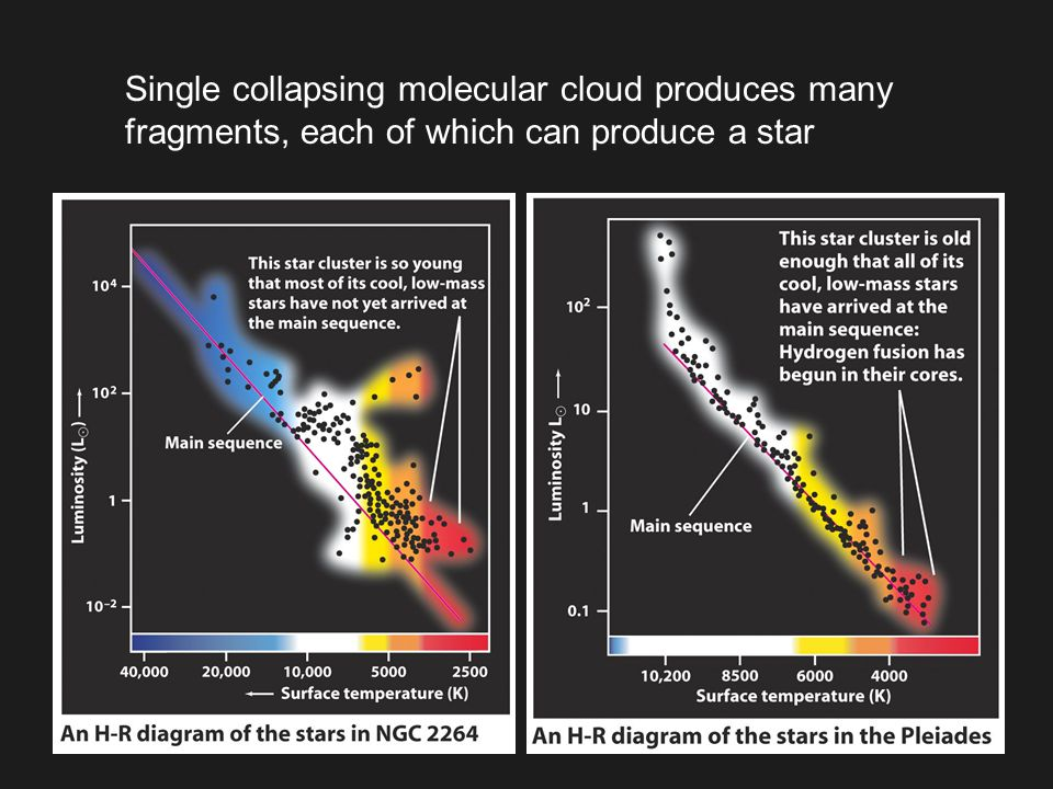 Single collapsing molecular cloud produces many fragments, each of which can produce a star