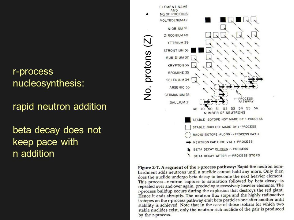 r-process nucleosynthesis: rapid neutron addition beta decay does not keep pace with n addition No.