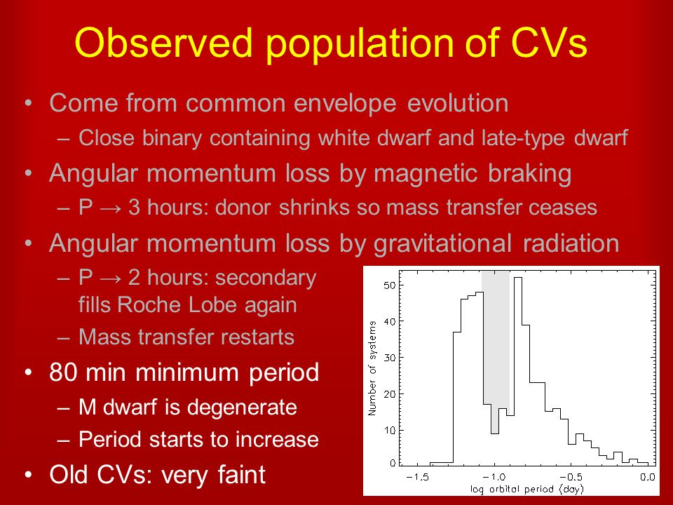 Observed population of CVs Come from common envelope evolution –Close binary containing white dwarf and late-type dwarf Angular momentum loss by magnetic braking –P → 3 hours: donor shrinks so mass transfer ceases Angular momentum loss by gravitational radiation –P → 2 hours: secondary fills Roche Lobe again –Mass transfer restarts 80 min minimum period –M dwarf is degenerate –Period starts to increase Old CVs: very faint