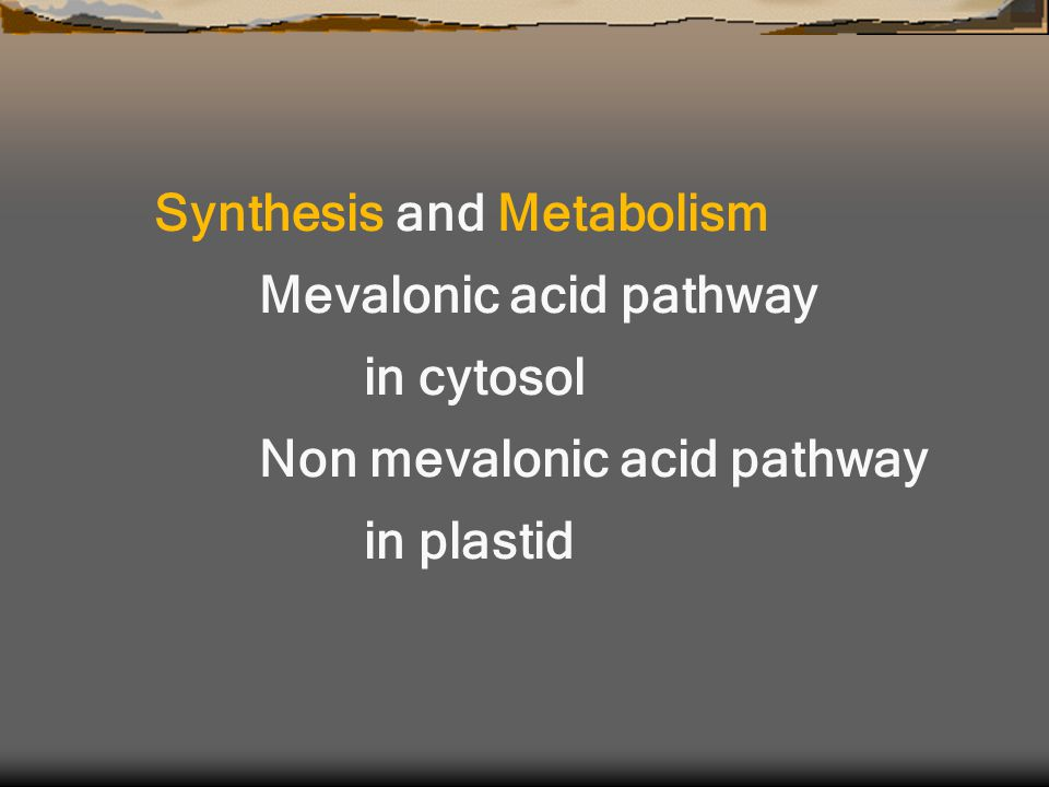 Synthesis and Metabolism Mevalonic acid pathway in cytosol Non mevalonic acid pathway in plastid