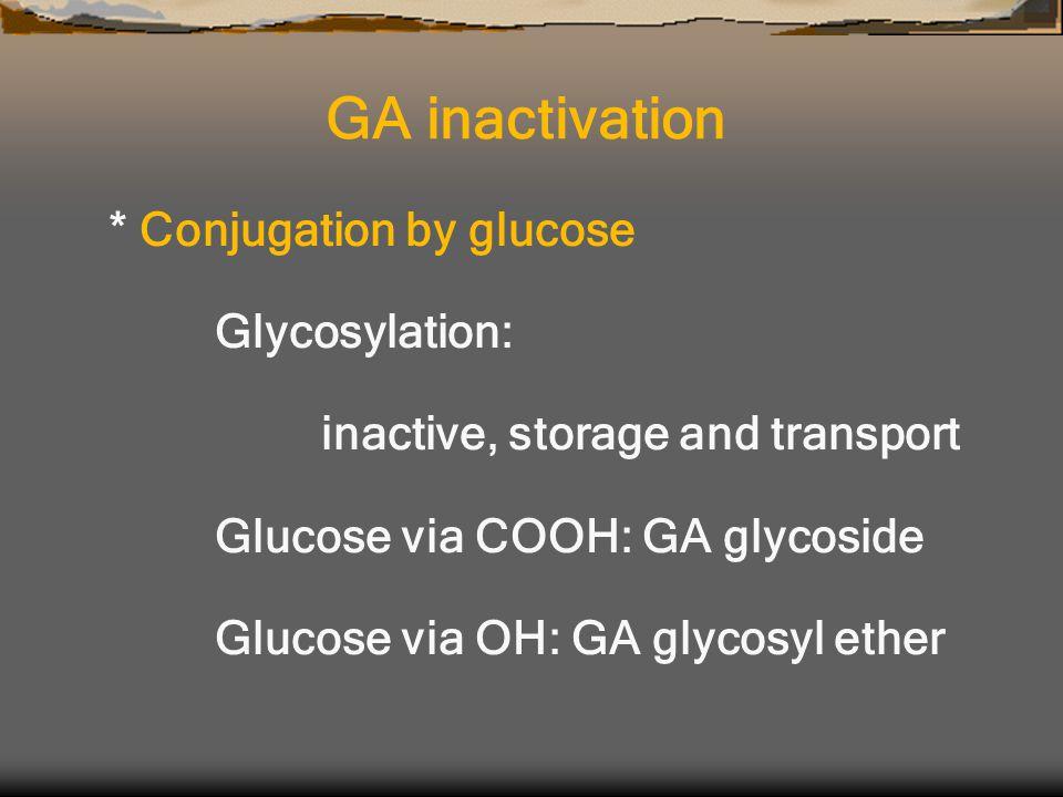 * Conjugation by glucose Glycosylation: inactive, storage and transport Glucose via COOH: GA glycoside Glucose via OH: GA glycosyl ether GA inactivation