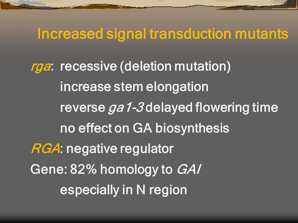 rga:recessive (deletion mutation) increase stem elongation reverse ga1-3 delayed flowering time no effect on GA biosynthesis RGA: negative regulator Gene: 82% homology to GAI especially in N region Increased signal transduction mutants