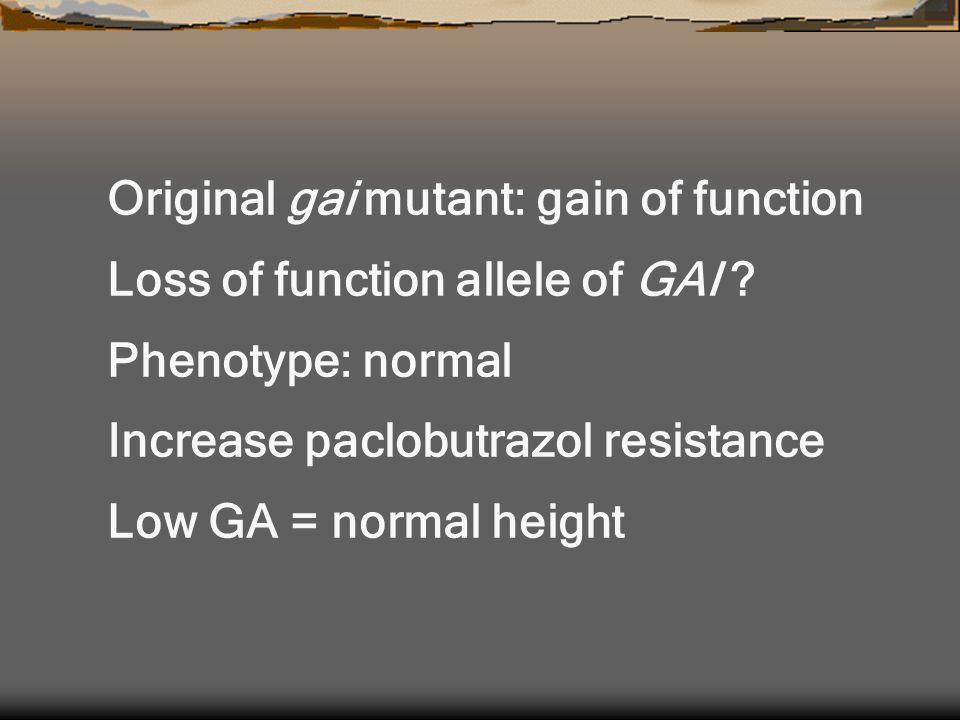 Original gai mutant: gain of function Loss of function allele of GAI .