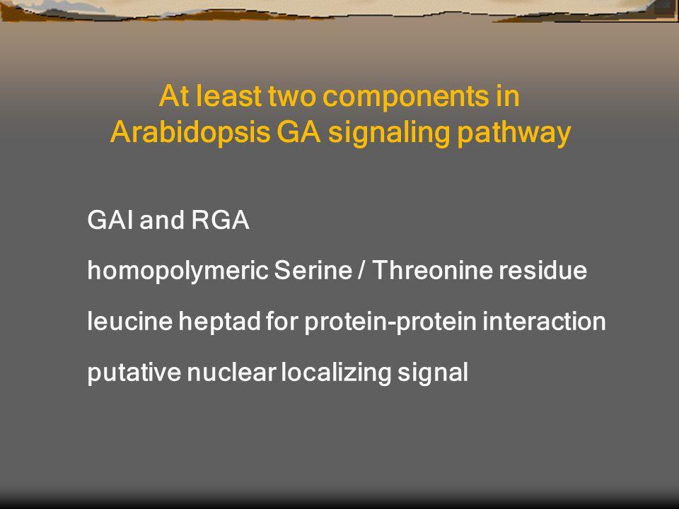 At least two components in Arabidopsis GA signaling pathway GAI and RGA homopolymeric Serine / Threonine residue leucine heptad for protein-protein interaction putative nuclear localizing signal