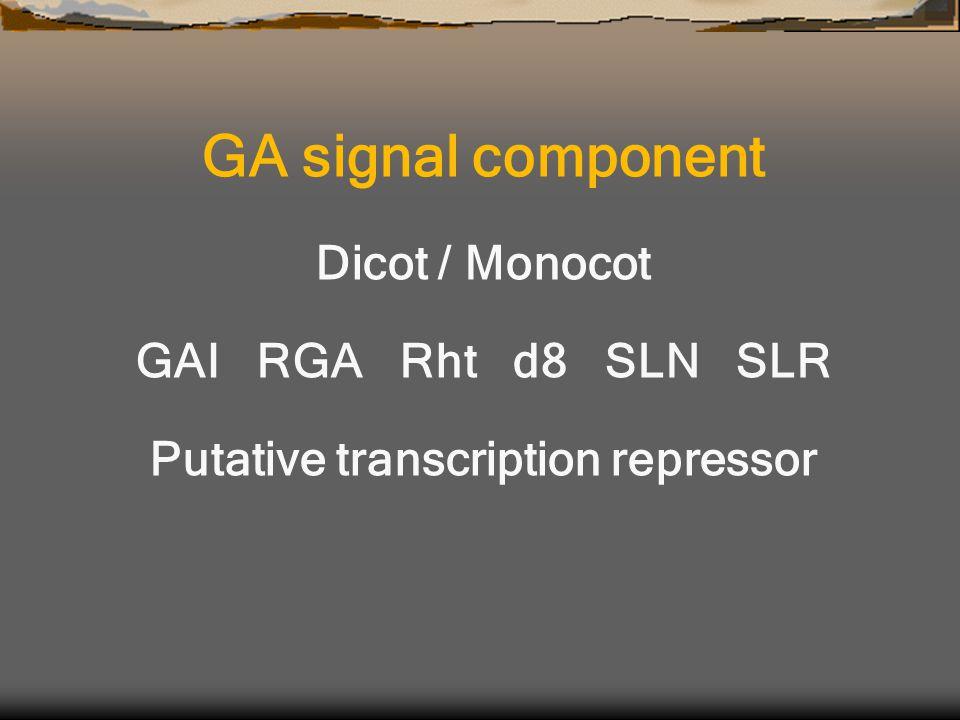 GA signal component Dicot / Monocot GAI RGA Rht d8 SLN SLR Putative transcription repressor