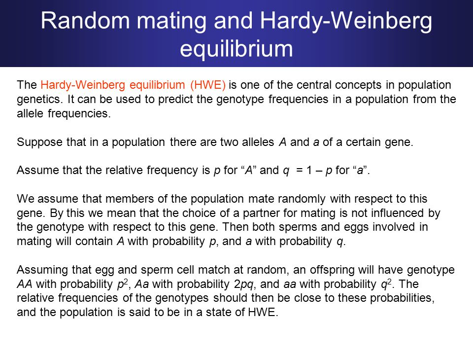 Random mating and Hardy-Weinberg equilibrium The Hardy-Weinberg equilibrium (HWE) is one of the central concepts in population genetics.