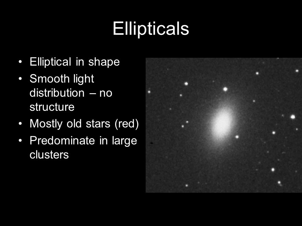 Ellipticals Elliptical in shape Smooth light distribution – no structure Mostly old stars (red) Predominate in large clusters