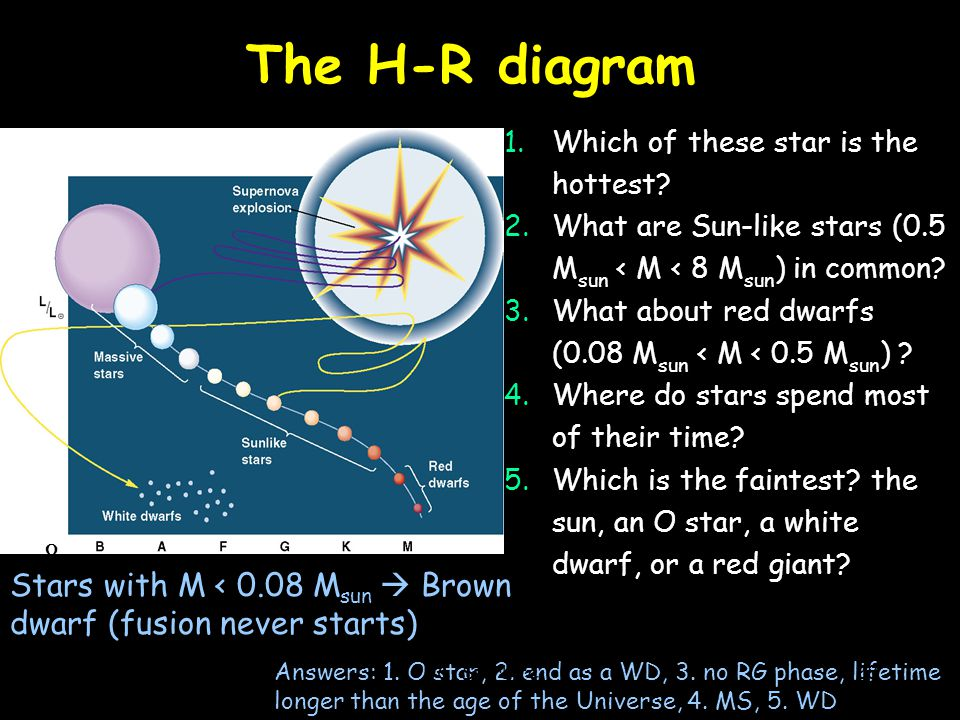 The H-R diagram 1.Which of these star is the hottest? 2.What are Sun-like stars (0.5 M sun < M < 8 M sun ) in common? 3.What about red dwarfs (0.08 M