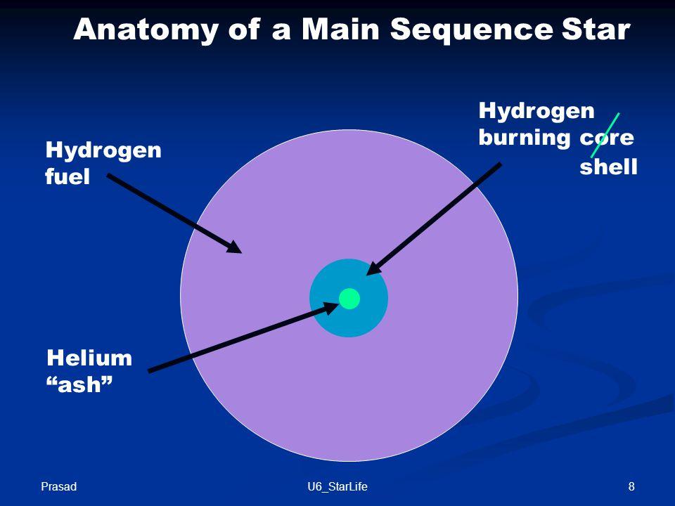 Hydrogen fuel Hydrogen burning core Helium ash Anatomy of a Main Sequence Star shell Prasad 8U6_StarLife