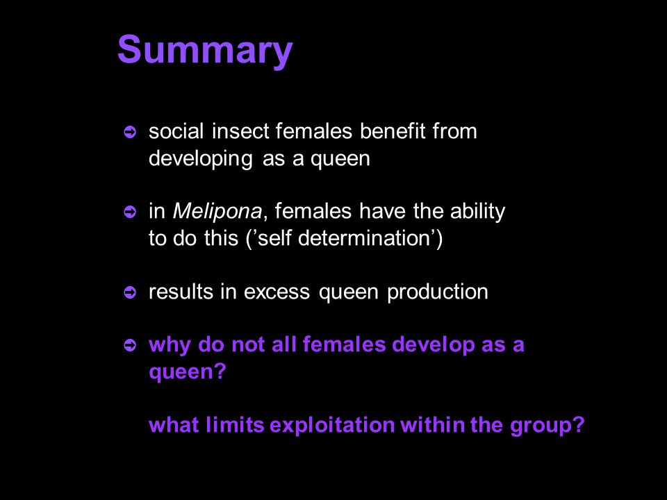 Summary ò social insect females benefit from developing as a queen ò in Melipona, females have the ability to do this ('self determination') ò results in excess queen production ò why do not all females develop as a queen.