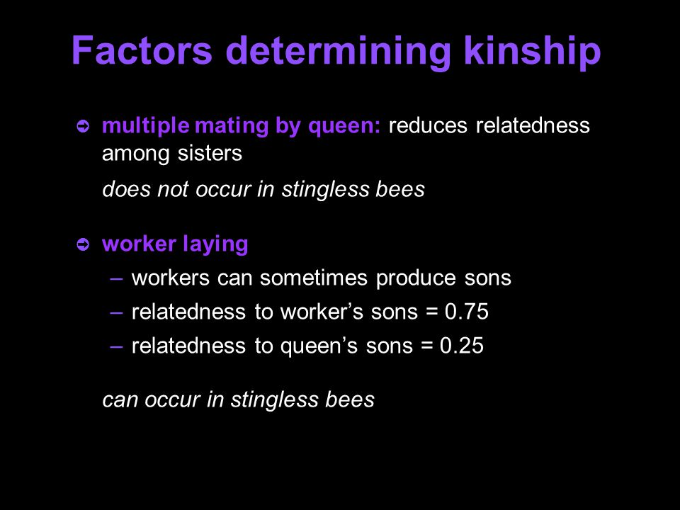 Factors determining kinship ò multiple mating by queen: reduces relatedness among sisters does not occur in stingless bees ò worker laying –workers can sometimes produce sons –relatedness to worker's sons = 0.75 –relatedness to queen's sons = 0.25 can occur in stingless bees