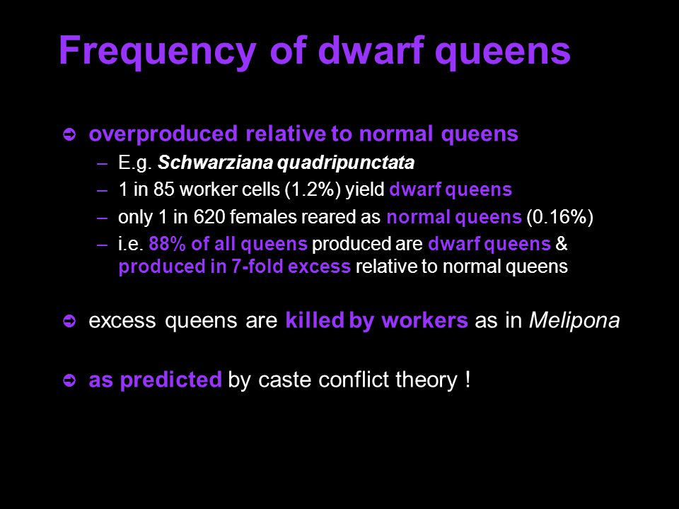 Frequency of dwarf queens ò overproduced relative to normal queens –E.g.