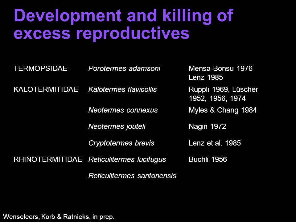 Development and killing of excess reproductives TERMOPSIDAEPorotermes adamsoniMensa-Bonsu 1976 Lenz 1985 KALOTERMITIDAEKalotermes flavicollisRuppli 1969, Lüscher 1952, 1956, 1974 Neotermes connexusMyles & Chang 1984 Neotermes jouteliNagin 1972 Cryptotermes brevisLenz et al.