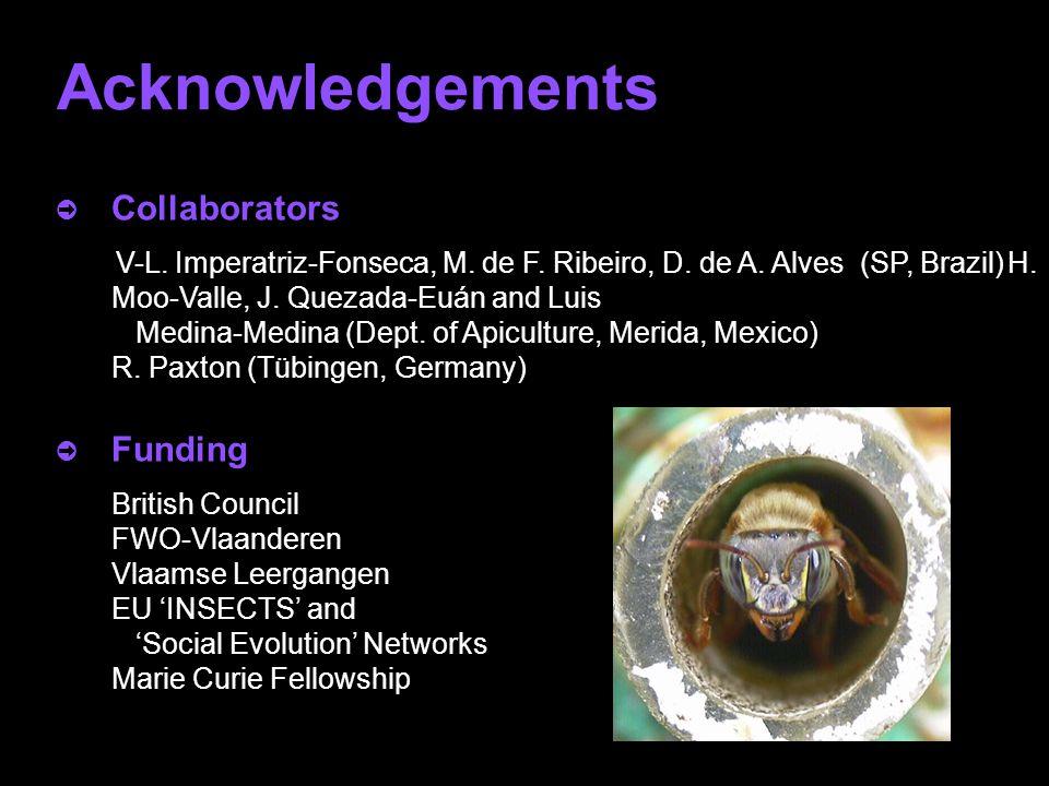 Acknowledgements ò Collaborators V-L.Imperatriz-Fonseca, M.
