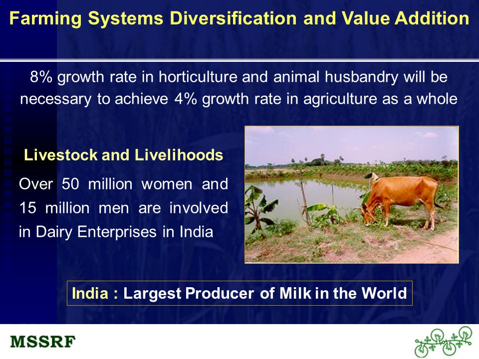Livestock and Livelihoods Over 50 million women and 15 million men are involved in Dairy Enterprises in India Farming Systems Diversification and Value Addition 8% growth rate in horticulture and animal husbandry will be necessary to achieve 4% growth rate in agriculture as a whole India : Largest Producer of Milk in the World