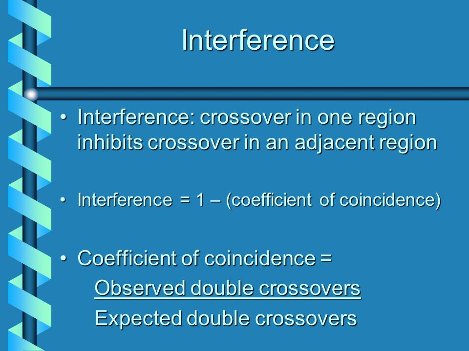Interference Interference: crossover in one region inhibits crossover in an adjacent regionInterference: crossover in one region inhibits crossover in