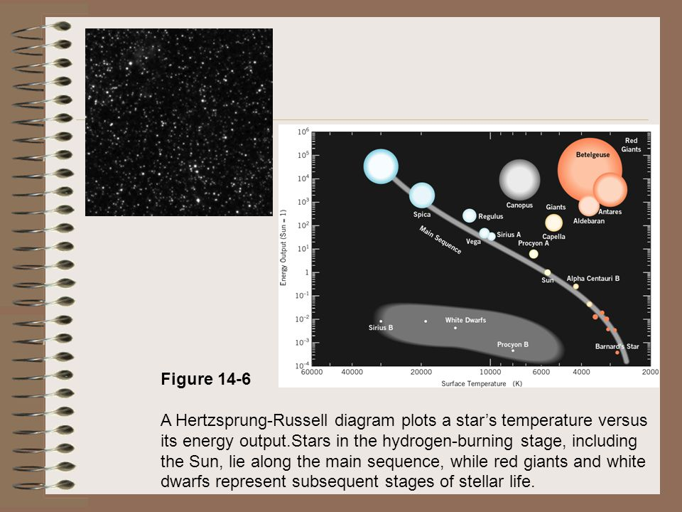 Figure 14-6 A Hertzsprung-Russell diagram plots a star's temperature versus its energy output.Stars in the hydrogen-burning stage, including the Sun, lie along the main sequence, while red giants and white dwarfs represent subsequent stages of stellar life.
