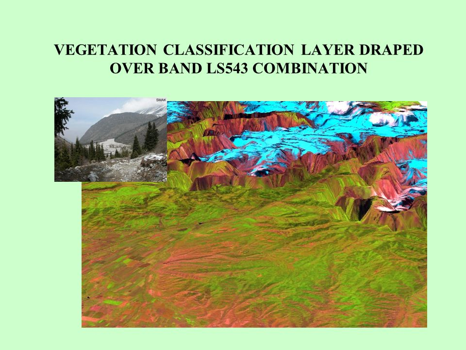 VEGETATION CLASSIFICATION LAYER DRAPED OVER BAND LS543 COMBINATION