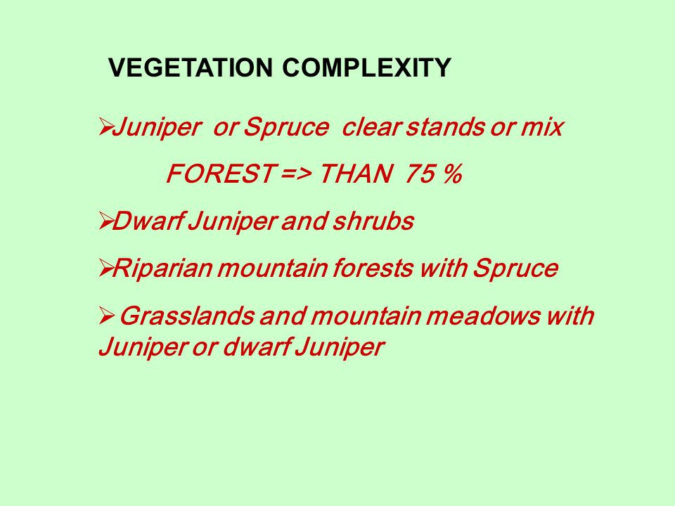 VEGETATION COMPLEXITY  Juniper or Spruce clear stands or mix FOREST => THAN 75 %  Dwarf Juniper and shrubs  Riparian mountain forests with Spruce  Grasslands and mountain meadows with Juniper or dwarf Juniper