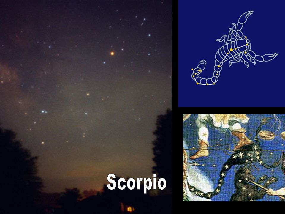 The Zodiac is a special group of constellations that extend out from Earth's equator.