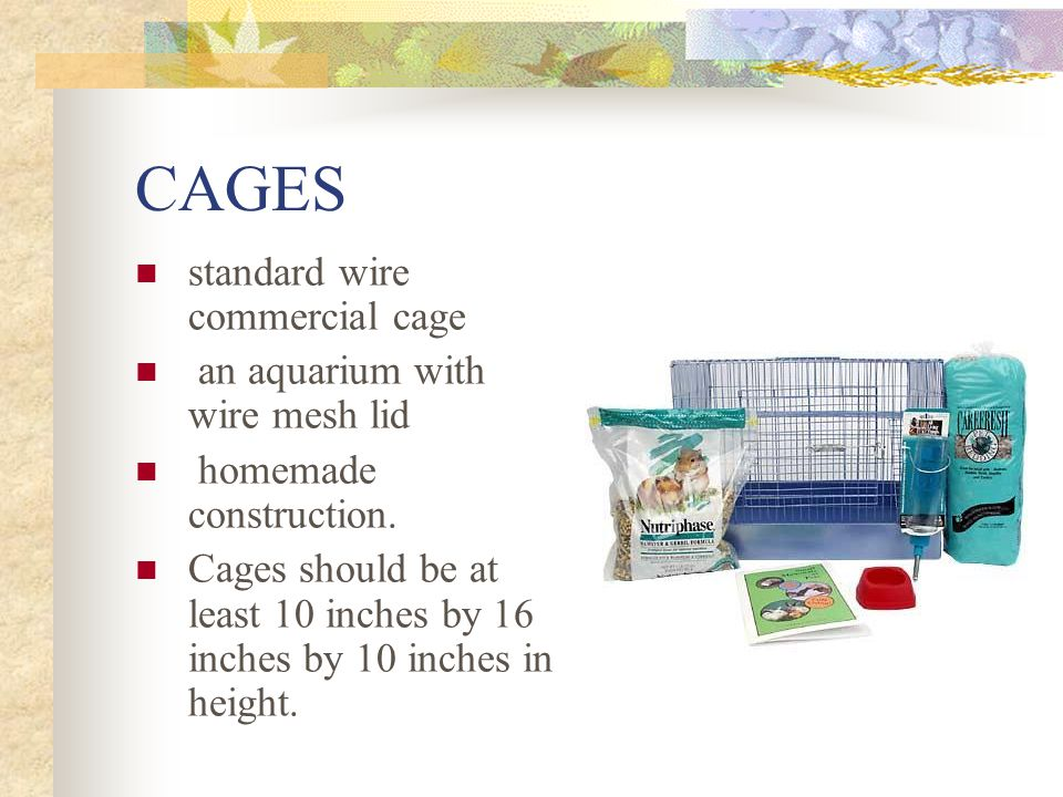 CAGES standard wire commercial cage an aquarium with wire mesh lid homemade construction.