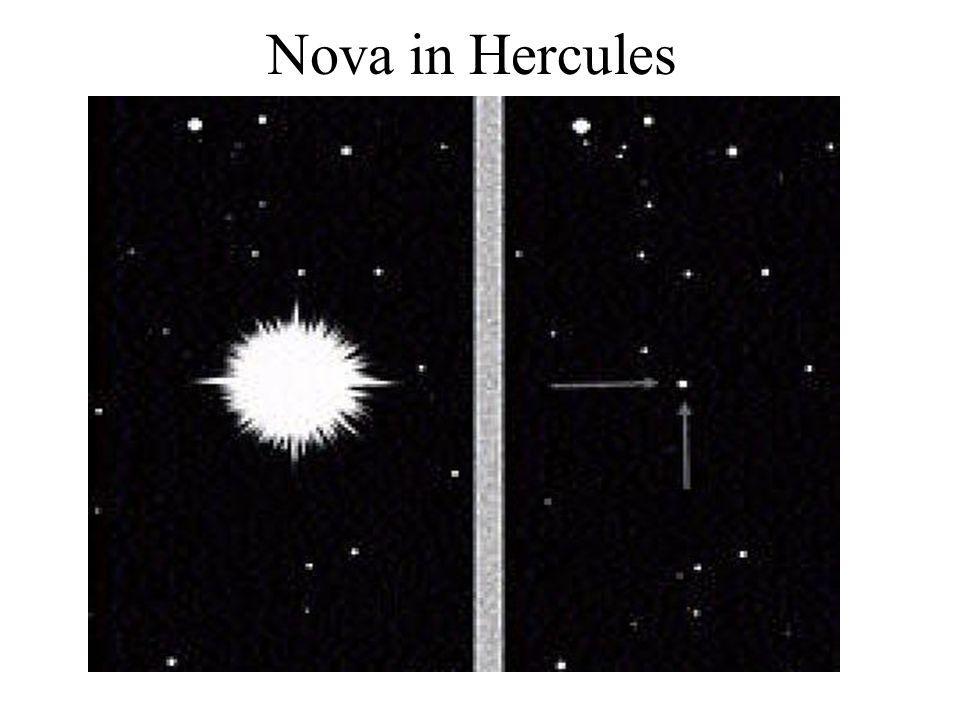 Nova in a Binary System